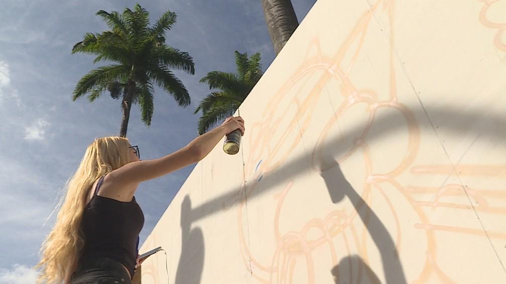 Artistas pintam tapumes e fazem mural no entorno da Praça da Liberdade, em BH — Foto: Reprodução/TV Globo