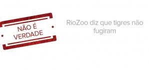 Tigres escaparam do RioZoo? Não é verdade!