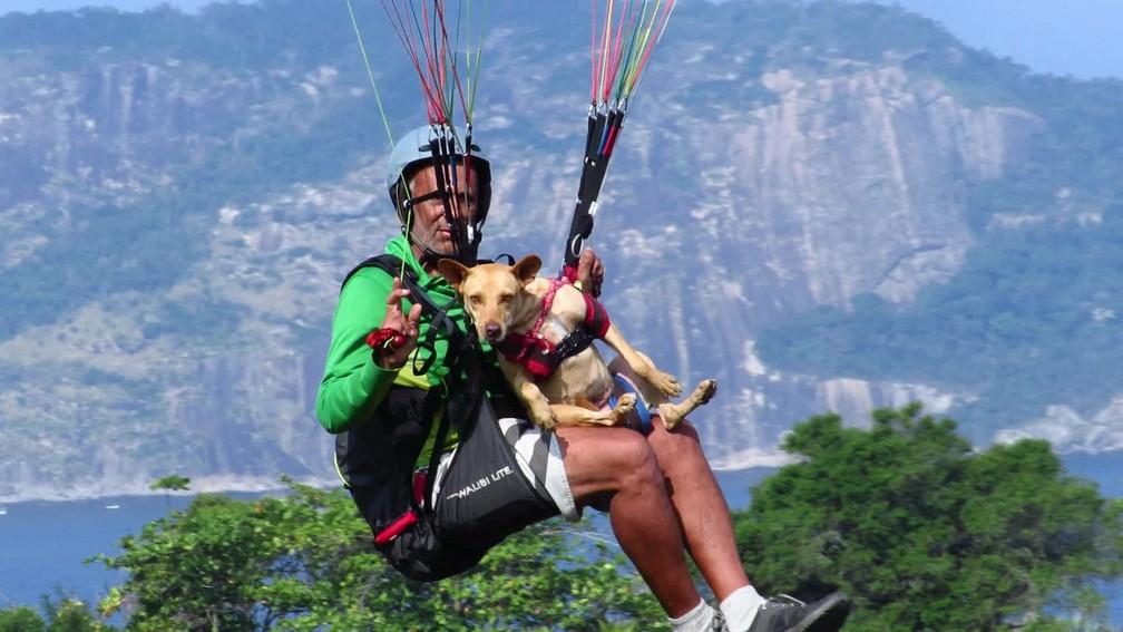 Cadela Dorinha realiza mais um voo de parapente por Niterói — Foto: Bruno Albernaz / G1