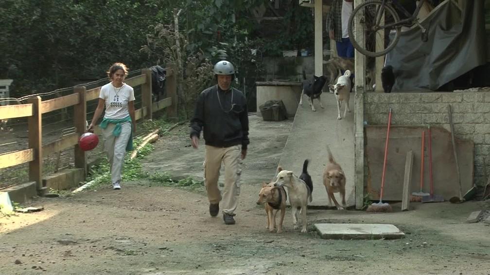 Em casa, Luciano cuida de 28 cães e 12 gatos, todos resgatados na rua. — Foto: Miguel Folco / G1